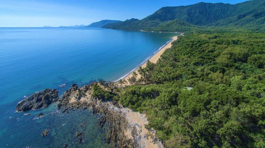 Ocean meets jungle: Am Cape Tribulation